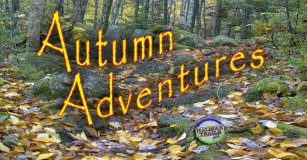 Fall Hiking Halifax