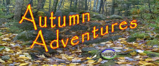 Fall Hikes Halifax hiking trails autumn