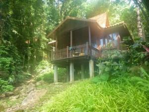 A rainforest chalet - the Berjaya Langkawi