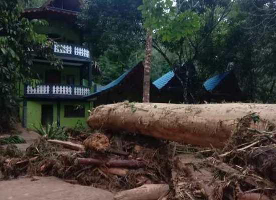 Banjir Bandang, Gelondongan Kayu Hantam Kawasan Wisata Landak River,Bohorok