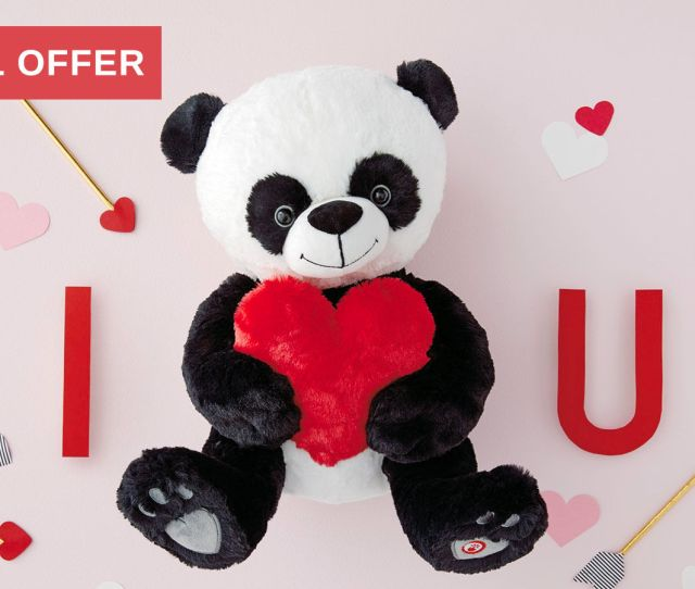 Bear Hugs Panda Special Offer