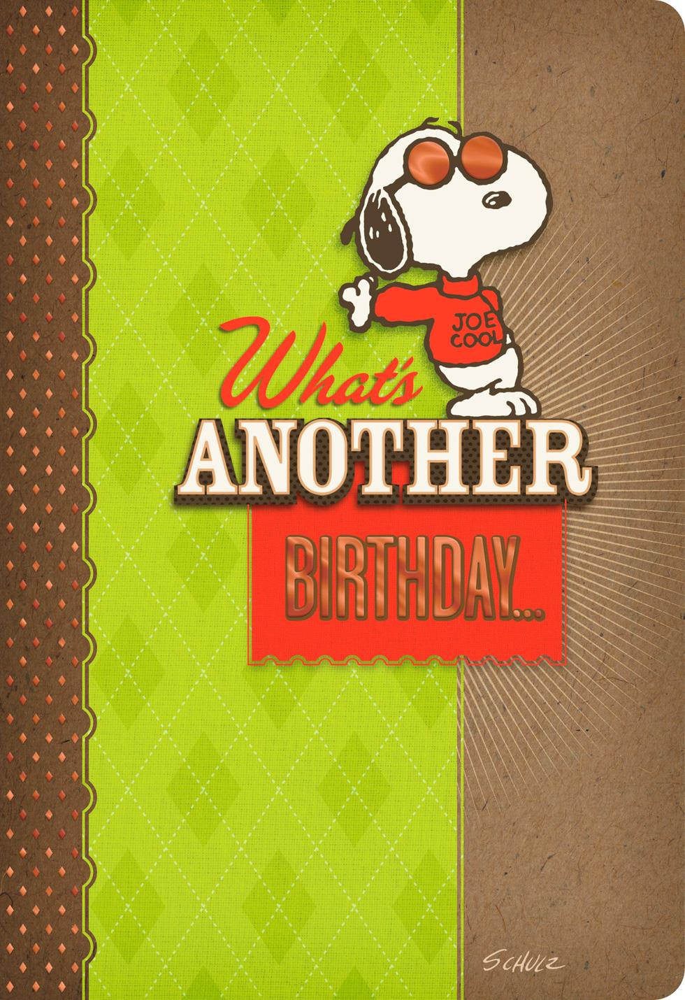 Peanuts® Snoopy Handsome Dog Birthday Card Greeting