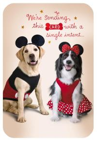 Disney Mickey and Minnie Dogs in Costume Birthday Card ...
