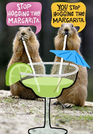 Hog The Margarita Funny Birthday Card Greeting Cards