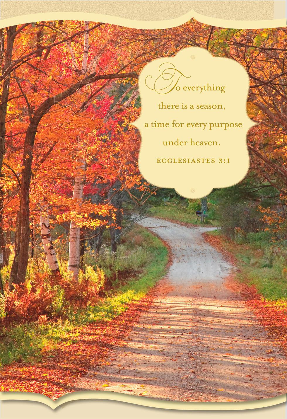 Gods Abundant Blessings Religious Thanksgiving Card