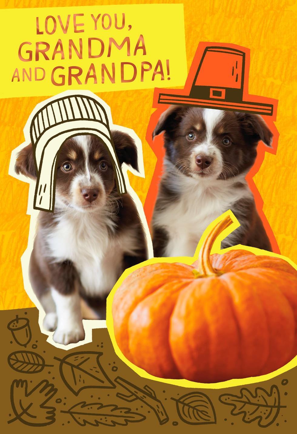 Pilgrim Puppies Thanksgiving Card For Grandparents