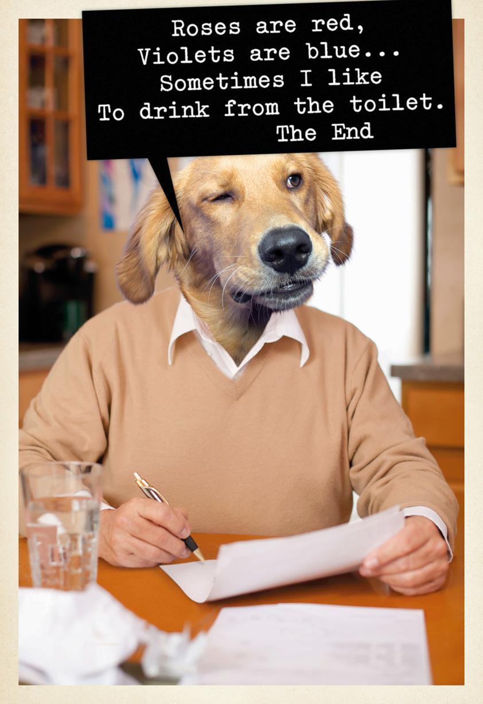 Dog Poet Funny Birthday Card Greeting Cards Hallmark