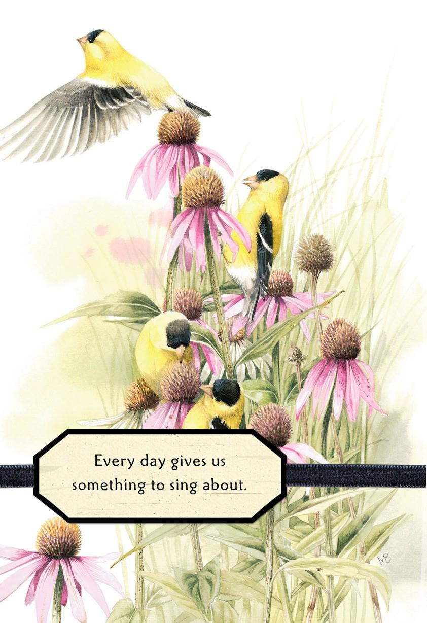 Something To Sing About Marjolein Bastin Birthday Card