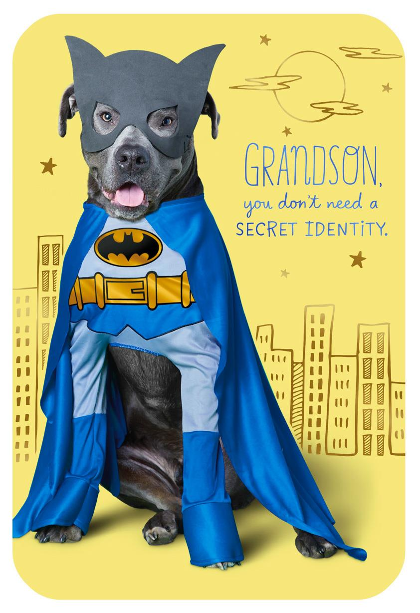 DC Comics™ Batman™ Dog Birthday Card For Grandson