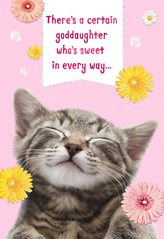 Daisy Kitten Birthday Card For Goddaughter Greeting