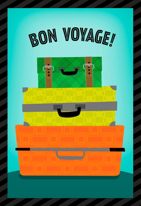 Suitcases Bon Voyage Card  Greeting Cards  Hallmark