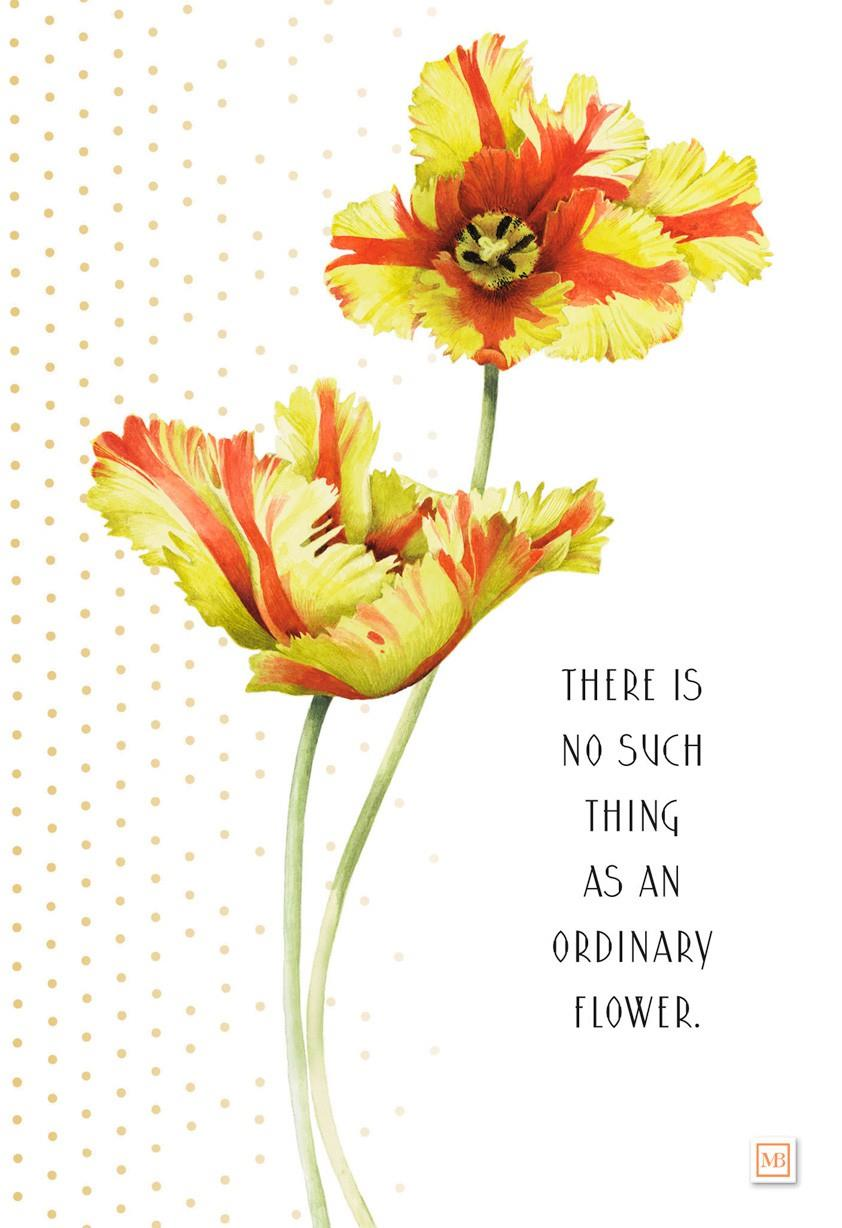 You Re No Ordinary Flower Marjolein Bastin Birthday Card