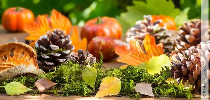 Herbstdeko aus Naturmaterialien  Hallo Frau