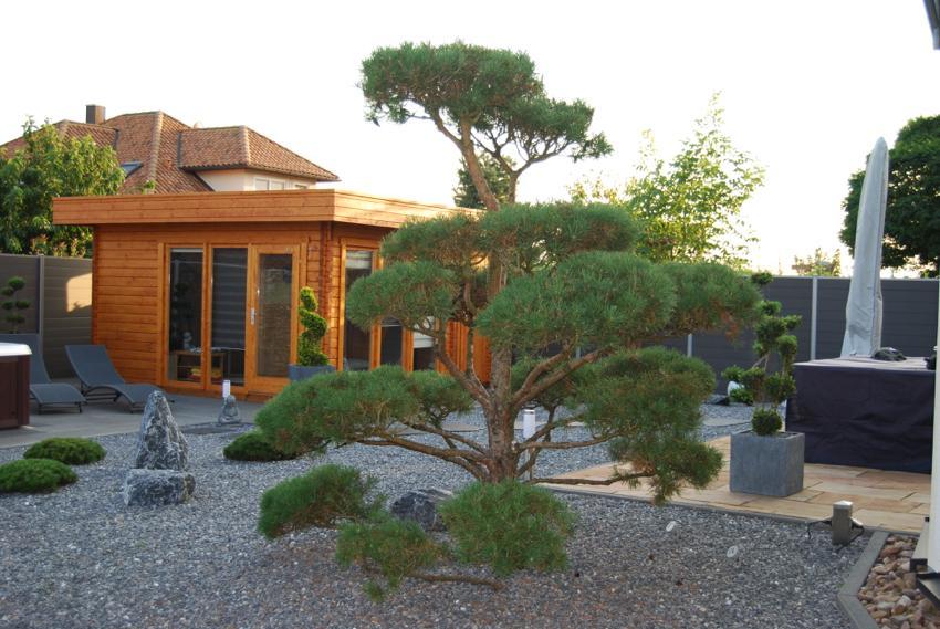 Bildergalerie Stein Garten Design HALLO LUEBBECKE