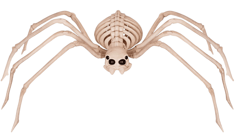 all about spider costumes