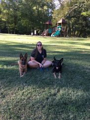 me and my GSDs-Dog adventures 2020