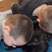 Jase and Luke had to give them a kiss!