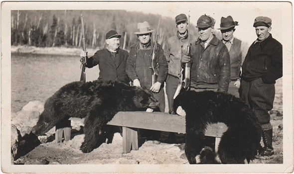 Two dead black bears in the foreground. Men with guns in the background.