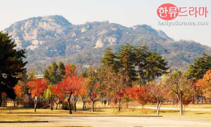 Korean autumn at Gyeongbok Palace