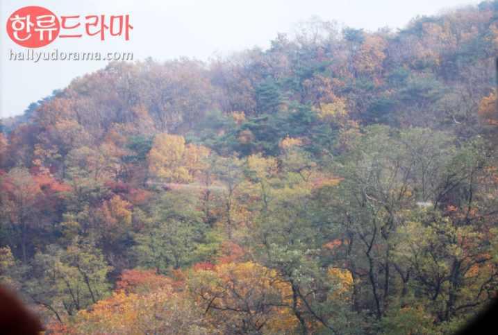 Korea Autumn at Namsan