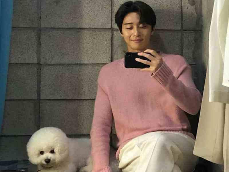 Park Seo-joon is Smart?