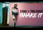 Official Video-D'Banj Ft. Tiwa Savage – Shake It