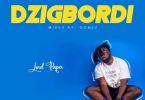 Download MP3: Lord Paper – Dzigbordi (Mixed By Gomez)