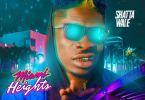 Download MP3: Shatta Wale – Miami Heights (Prod by Damage Musiq)