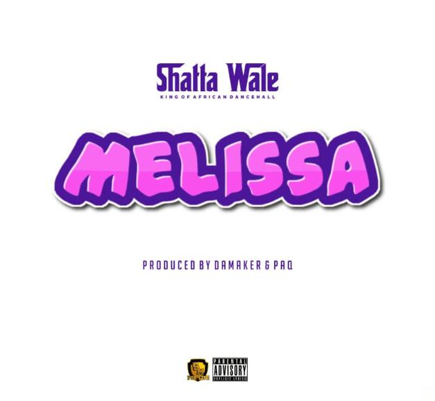 Download Instrumental: Shatta Wale – Melissa ~ Halmblog com