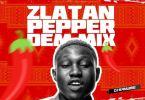 DJ Kaywise – Pepper Dem Mix mp3