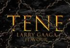 Larry Gaaga – Tene Ft Flavour mp3 download
