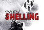 Yaa Pono – Shelling mp3 download