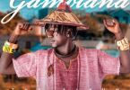 ST da Gambian Dream – Girl Dem Ft Stonebwoy mp3 download