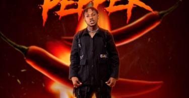 Davolee Pepper mp3 download