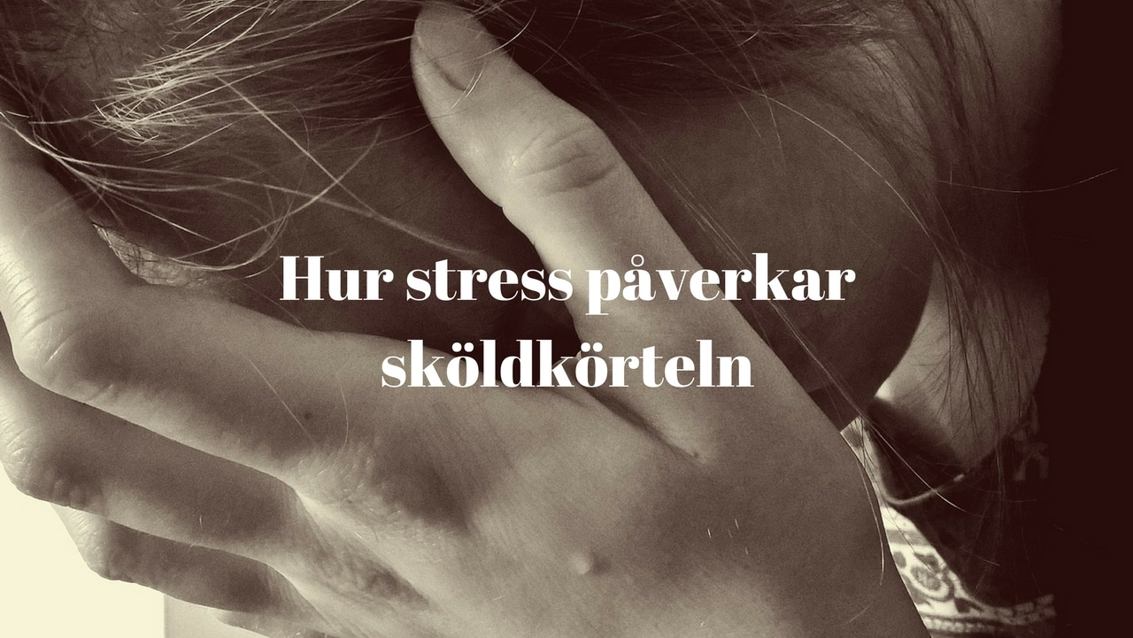 ingen matlust stress