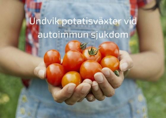 Därför kan potatisväxter vara ett problem vid autoimmun sjukdom
