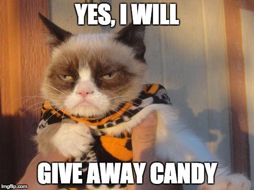 who-killed-my-halloween-grumpy-cat