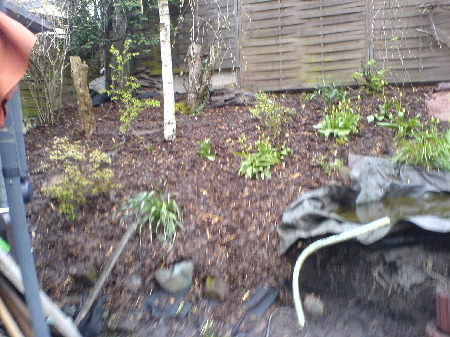 Pflanzringe Setzen Excellent Sichtschutz Auf Sttzmauer Verstrkung On Andere Mit Sichtschutz Auf