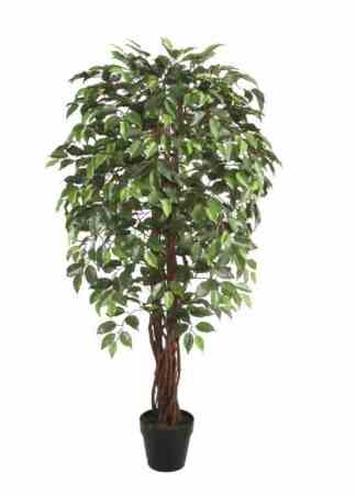 150Cm Wood Trunk Ficus Tree With Pot