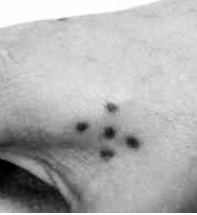 Tatuajes Carcelarios Y Sus Significados Hamahiru Ink Estudio De