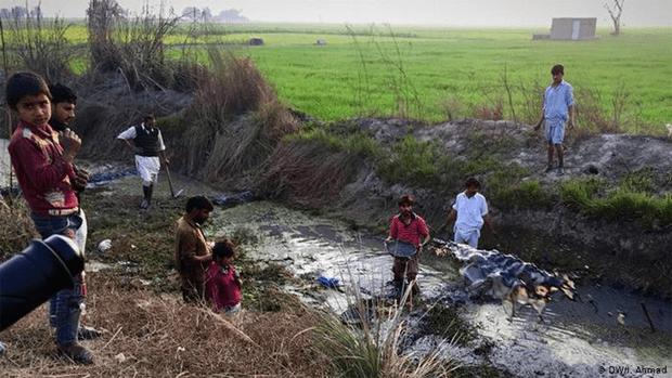 پاکستان میں دیہات کی سادہ مگر پرلطف زندگی جس کی خواہش ہر کسی کو٬ چند دلچسپ جھلکیاں 19