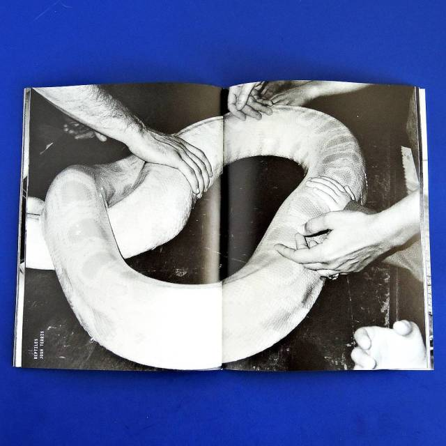 Photo by Josh Terris @jo_sesh in new issue of Hamburger Eyes out now hamburgereyes.com
