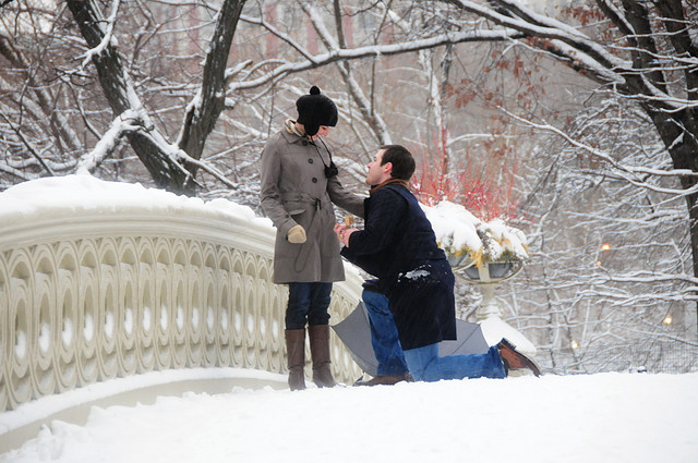 https://i0.wp.com/www.hamiltonjewelers.com/blog/wp-content/uploads/2012/02/proposal-at-central-park.jpg