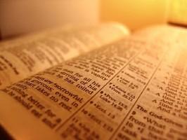Selected Scriptures Series