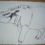 Vanishing Animals - Sumatras Rhinoceros, 1986