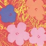 Flowers, [II.69], 1970