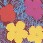 Flowers, [II.71], 1970