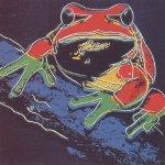 Pine Barrens Tree Frog, [II.294], 1983