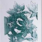 Poinsettias, [IIIA.51], 1983