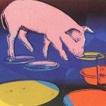 Fiesta Pig [II.184]